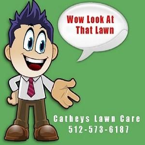 austin lawn care